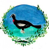 Associação Permacultural Jacutinga do Caparaó