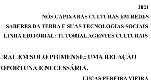 Lucas Pereira Vieira – Agente Cultural em Solo Piumense: uma relação oportuna e necessária