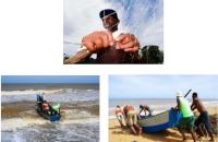 Ianara Campista Costa – A cultuta da pesca artesanal
