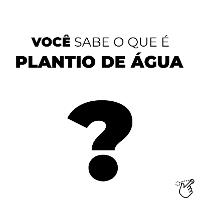 Murilo de Paula e Silva – Um pouco sobre Plantio de Água