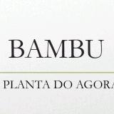 Rayssa Lodi Mozer e Rhaiane Turler: Bambu – A planta do agora /Introdução ao Bambu – pdf